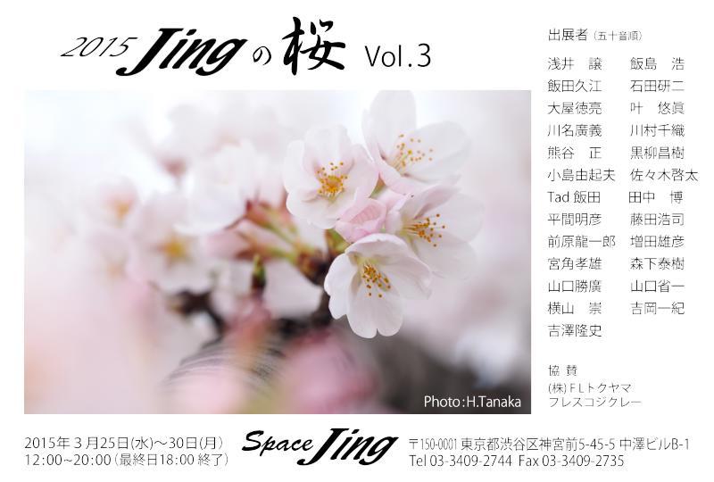 2015Jingの桜DM 01