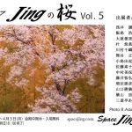 jing_sakura_DM